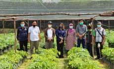 Permalink ke Sudiyanto Dampingi Kunker Yessy Melania ke KOMPAS di Desa Kunyai