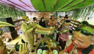 Permalink ke Kunjungi Desa Jaya Mentari, Wabup Sintang Hadiri Pelantikan Temenggung Tempunak Hulu