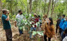 Permalink ke Sudiyanto Minta Kades Focus Pemberdayaan Ekonomi Masyarakat